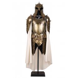 Armure de la garde royale